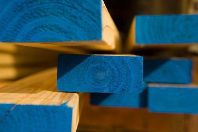 Weston Forest wholesale lumber distributor toronto