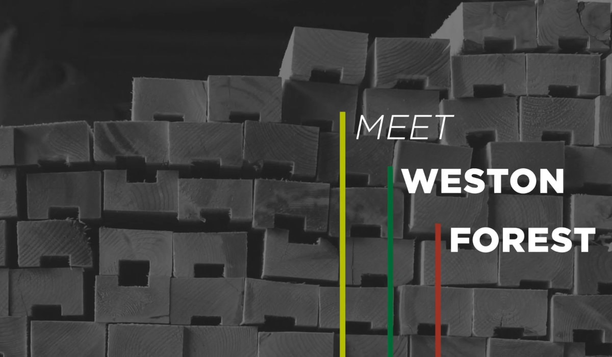 Meet Weston Forest