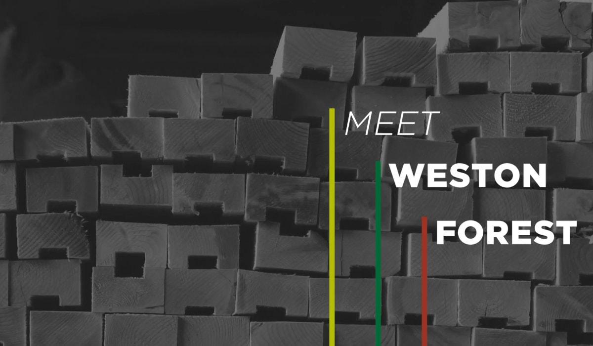 Rendez-vous sur Weston Forest